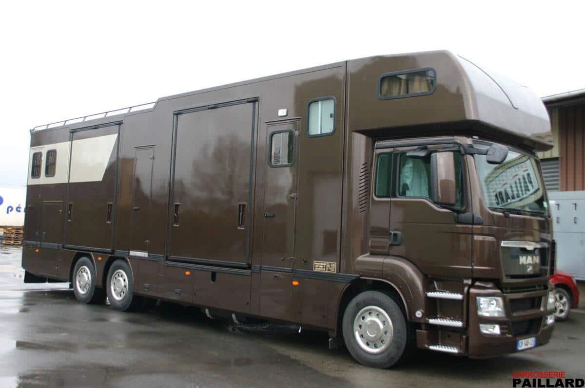 Occasion Camion chevaux poids lourd MAN 6×2 pour transporter 8 chevaux